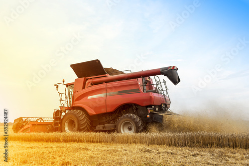 Obraz na plátně Harvester is working during harvest time in the farmer's fields, machine is cutt