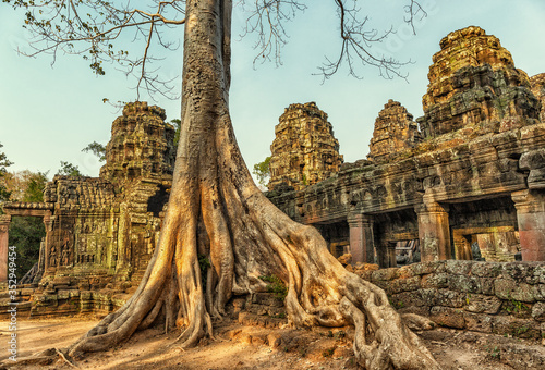 Roots covering the ruin of Ta Prohm temple Fotobehang