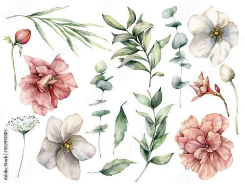 Photo Watercolor floral set with white and pink flowers and eucalyptus leaves