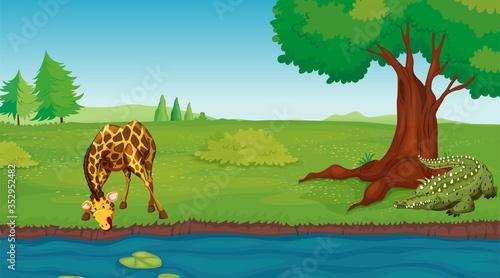 alligator are waiting for giraffe,river alligator illustration Wallpaper Mural
