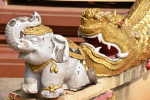 Golden Dragon And White Elepha...