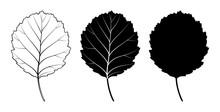 Alder Tree Leaf. Vector Illustration. Outline, Silhouette, Line Art Drawing