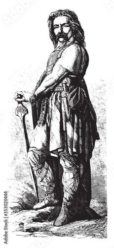 Fotografie, Obraz Vercingetorix. vintage illustration.