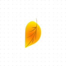 Tree Leaf Isolated Illustration
