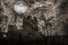 Crows Above Old Castle Under F...