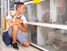 Teenage Boy With Small Dog Loo...