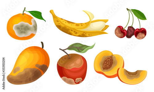 Fototapeta Garden Fruits with Skin Covered with Stinky Rot Vector Set obraz