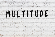 Word Multitude Painted On Whit...