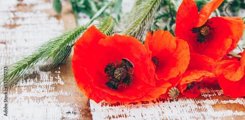 Obraz na plátně red field poppies on a wooden background, copy space