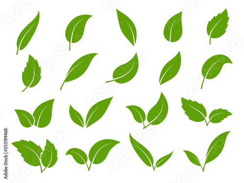 Fotografie, Obraz Leaf icon