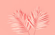 Exotic plants with backdrop. Tropical layout mockup. Background with painted palm leaves. Pink minimal concept art. 3D Render.