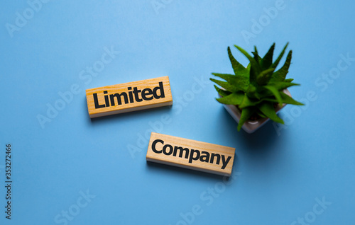 Fotomural Limited company words concept on wooden cubes