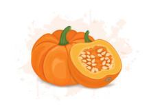 Pumpkin Vector Illustration With Half Piece Of Pumkin