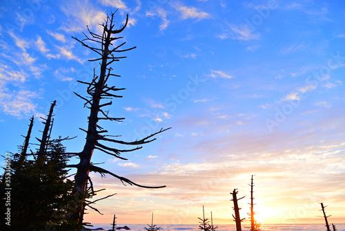 Fényképezés 近畿最高峰、八経ケ岳の日の出