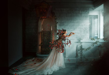 Artwork Photo. Image Gothic Queen. Black Orange Monarch Butterflies. Dark Room Of Castle, Golden Throne, Magic Sun Rays From Window. Creative Dress Long Train Peach Silk Skirt. Glamour Fantasy Woman