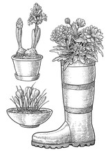 Flowers In Pot And Boot Illust...