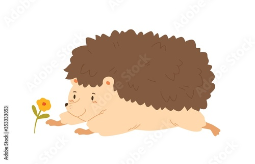 Obraz Funny hedgehog crawling to flower vector flat illustration. Cute forest animal having fun admiring plant isolated on white background. Colorful cartoon character lying having positive emotion - fototapety do salonu