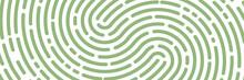 Fingerprint Background. Unicum Finger Print Green Pattern