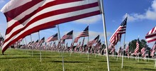 American Flag Flying Wind Memorial Veterans Usa