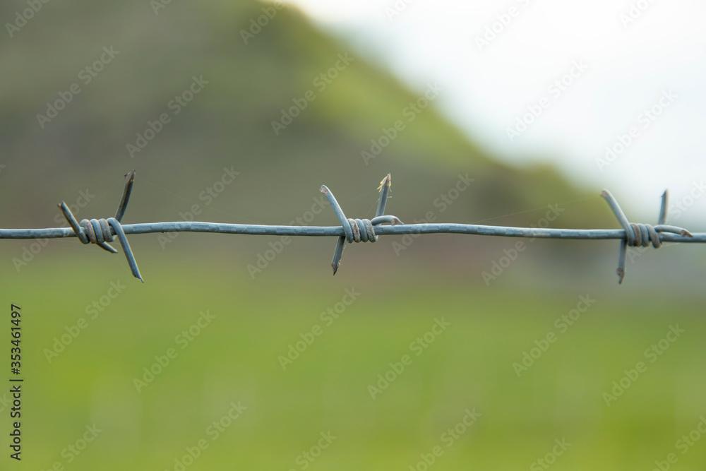 Fototapeta barbed wire in landscape