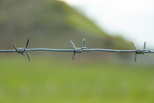 Barbed Wire In Landscape