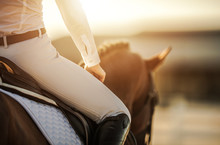 Female Horse Rider In Equestrian Facility