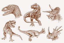 Graphical Vintage Set Of Dinos...