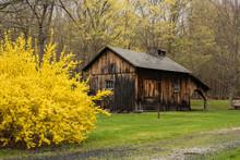 Old Barn In Appalachian Spring...