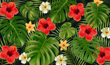 Summer Tropical Background. Tr...