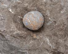Round Stone - A Large Sea Pebb...
