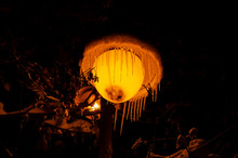Lantern In The Night In Winter