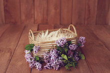 Newborn Digital Background Spring Lilac Basket Prop For Newborn. For Boys And Girls. Wood Back. Shoot Set Up With Prop Bed And Wood Backdrop