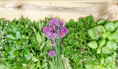 Panel Szklany Przyprawy Chive basil parsley mint Fresh herbs wooden table Food background