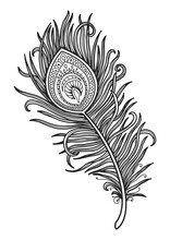 Mandala For Coloring Page Peacock Feather Design. T-shirt Print