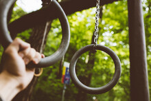 Gymnastic Rings. Workout In Th...