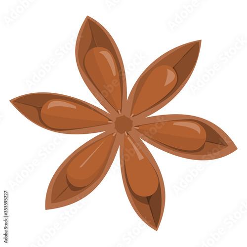 Fototapeta Star anise. Brown aromatic organic spice isolated obraz