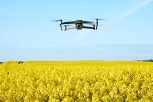 Drone Fly Over A Rape Field Ma...