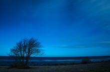 Stars Over The Baltic Sea