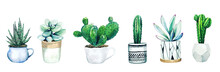 Set Of Six Potted Cactus Plant...