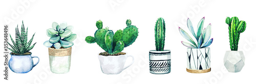 Stampa su Tela Set of six potted cactus plants and succulents