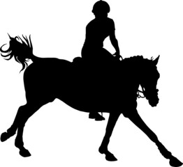 equestrian competitions, show jumping, women riders on horses, vector isolated images on a white background
