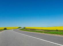Empty Road Near The Field