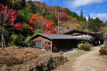 Ichikokutochi Tateba-chaya, Ai...