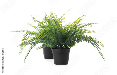 Fotografia Beautiful artificial plants in flower pots isolated on white
