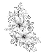 Hand Drawn Bunch With Flowers