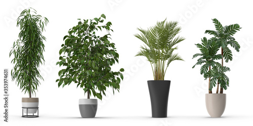 Potted Plant set with shadow Isolated on white background,realistic 3d illustration Fototapete