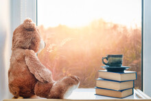 Teddy Bear With Cup Of Coffee. Cute  Stuffed Toy With Cup Of Tea And Books Sitting On Window. Good Morning Concept. Autumn Sad Mood