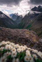 Gertrude Saddle Route, Fiordla...