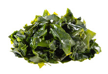 Seaweed Or Kelp Isolated On Wh...