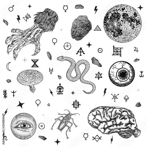 Fényképezés Occult alchemy pagan magic symbols set